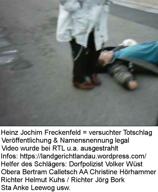Staatsanwaltschaft 76829 Landau Marienring 13 | Verbrecher - Schläger - Schützer